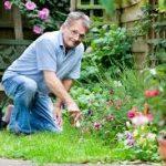 gardening older man