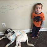kid draws on walls